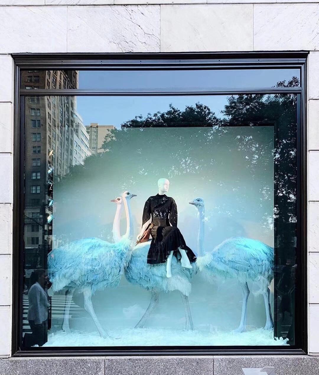 服装模特与动物搭配展示